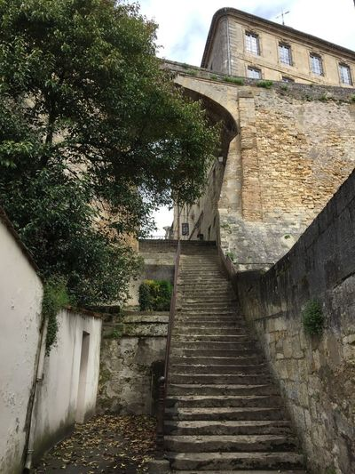 Petite promenade.. Architecture Built Structure Building Exterior Plant Tree Building Day Wall Staircase The Way Forward Old Low Angle View Outdoors