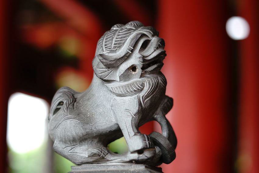 Singa statue EyeEm Selects Statue Focus On Foreground Sculpture Religion Close-up No People Spirituality