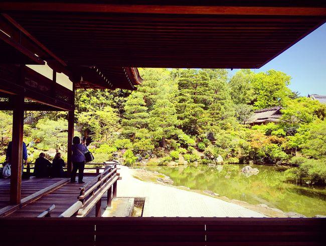 仁和寺 仁和寺御殿 京都 Kyoto, Japan Kyoto Garden Architecture Clear Sky Beauty In Nature Japanese Garden 3XSPUnity Relaxing Hello World Enjoying Life Travel Destinations Day