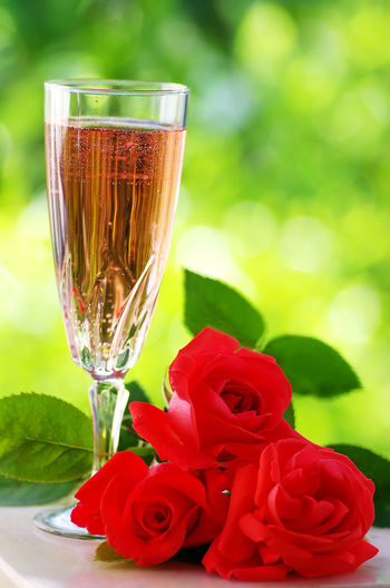 Close-up of glass of champagne with red rose on table