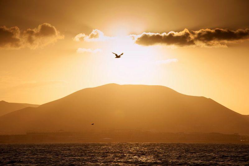 Fuerteventura - sunset on the boat
