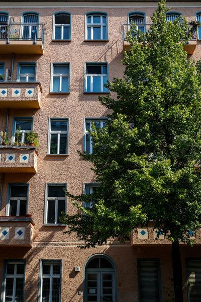Altbauliebe Friedrichshain Altbau Altbauliebe Dolziger Straße SamariterKiez Architecture Berlin Germany Deutschland Travel Destinations Travel Tranquility Full Frame Window Architecture Close-up Building Exterior Built Structure EyeEmNewHere