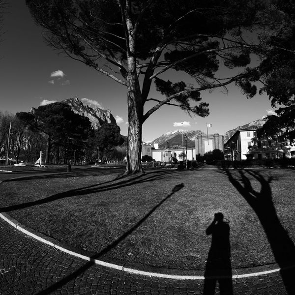 Lecco Lungo Lago Di Lecco Lago Di Como Black And White Photography Black & White Blackandwhite Bianco E Nero Italia Blackandwhite Photography Bianco E Nero Bianco-nero Water Lake Sony A7rm2 Sony α♡Love Luca Riva Lago Di Como, Italy Sony A7RII Sonyimages Samyang12mmf2.8 Day Sky Outdoors Tree