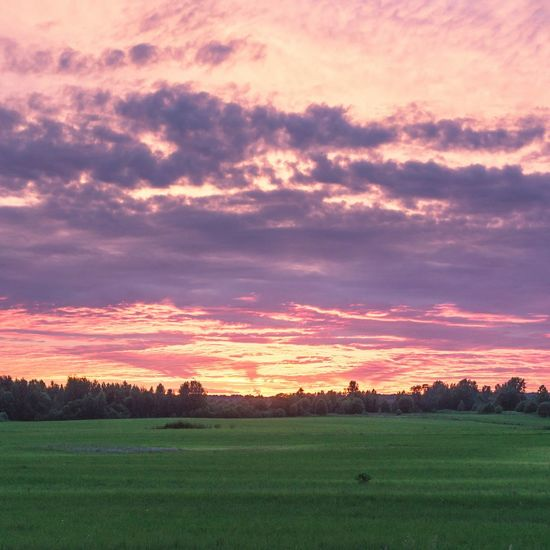 Sunset Field Dramatic Sky Landscape Beauty In Nature Nature Freshness No People Cloud - Sky Outdoors Multi Colored Pink Color Nature_ Collection  Folklife Fields Photography Flowers,Plants & Garden Travel Photography Summertime Summer Vibes Russia Beauty In Nature Sun Sky Sunlight