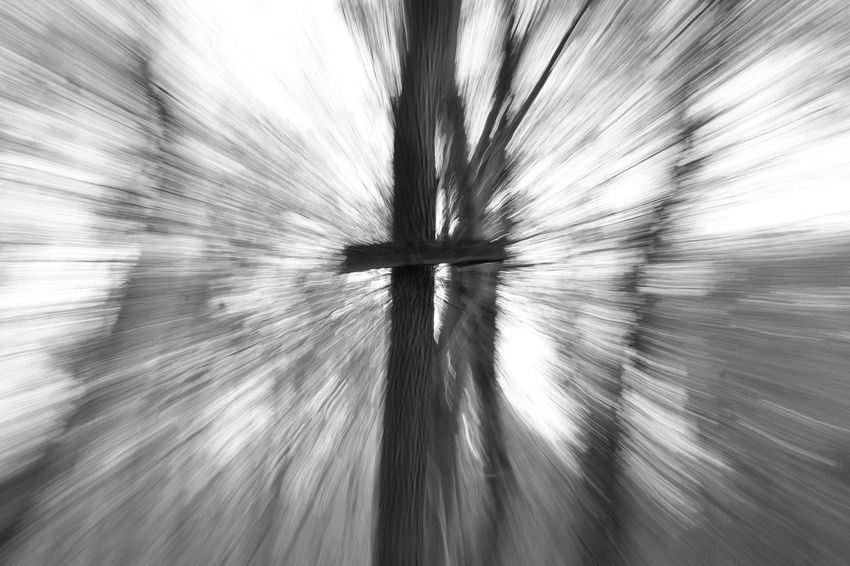 Blackandwhite Blur Blurry Forest No People