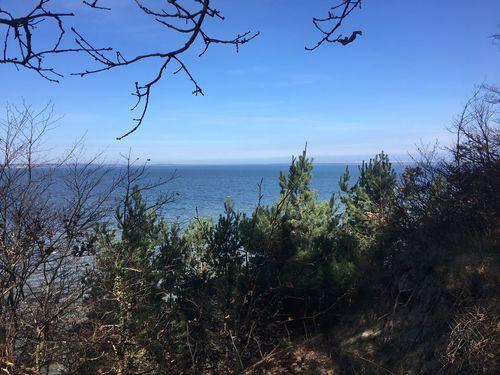 auf der steilküste am großen jasmunder Bodden Nature Horizon Over Water Outdoors