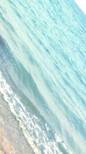 Donut Holes Donuts Save The World Donuts Sprinkles Chocolate Covered Being Homer Simpson First Eyeem Photo