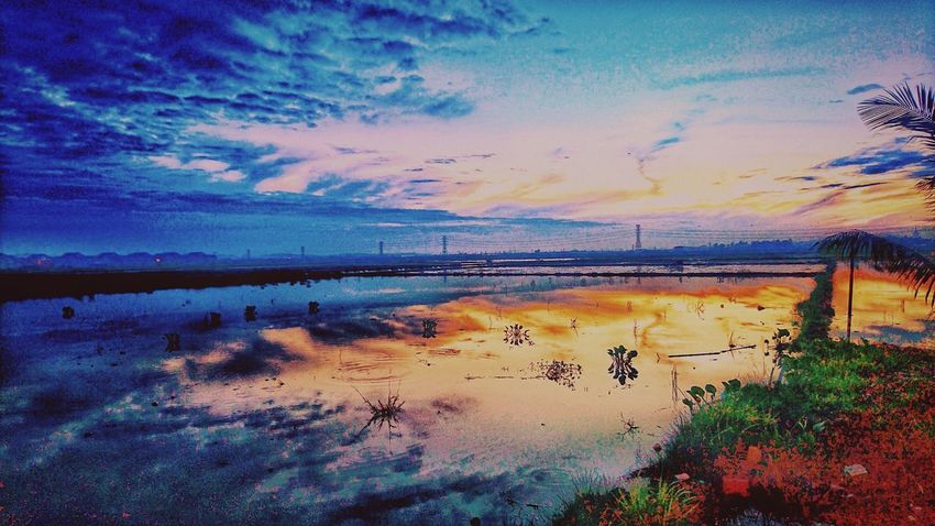 Reflection Water Multi Colored Sky Paddy Fields At Alor Setar Malaysia Sun_collection, Sky_collection, Cloudporn, Skyporn Rice Field Landscape