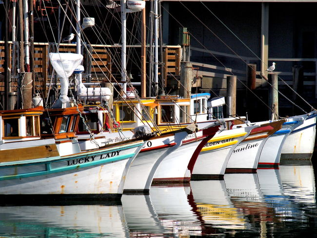 Boat Boat Dock Boat Ride Boating Boats Boats And Water Boats⛵️ Dock Docks Dockside Fish Board Fish Boat Fish Boats Fishboat Moored Nautical Vessel Sailing Ship Ship Transportation Vessel Vessel Cruise Ship Vessel In Port Vessels Vessels In Port Water