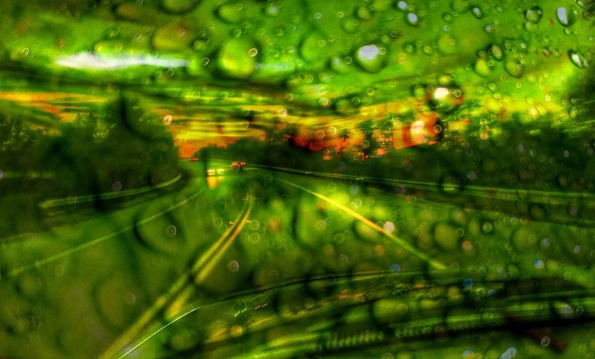 Double Exposure Dew Drops On A Leaf Driving Towards The Sunset No Wipers? Green Color Full Frame No People Nature Water Backgrounds Tree Beauty In Nature Illuminated Night Cut And Paste