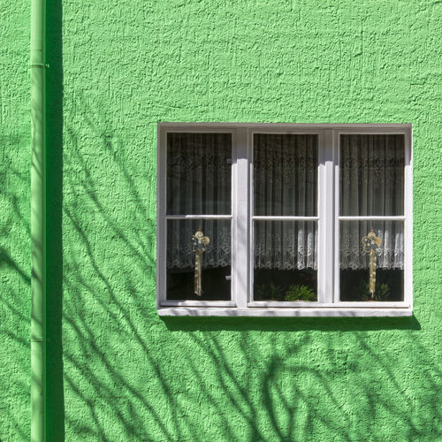 Fresh painted. FILIPPI GIULIA PHOTOGRAPHY. Architecture Berlin Branch Building Building Exterior Built Structure Colors Curtain Decoration Detail Freshness Geometric Shape Germany Green Color House Outdoors People Photography Silhouette Streetphotography Sun Sunlight Sunshine Tree Window