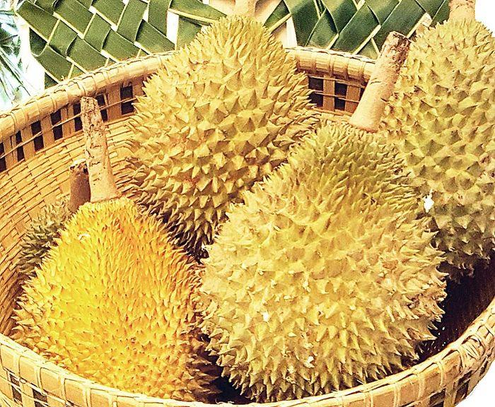 Durian, Day Statue Thailand EyeEm Gallery First Eyeem Photo Fruity Fruit thailand
