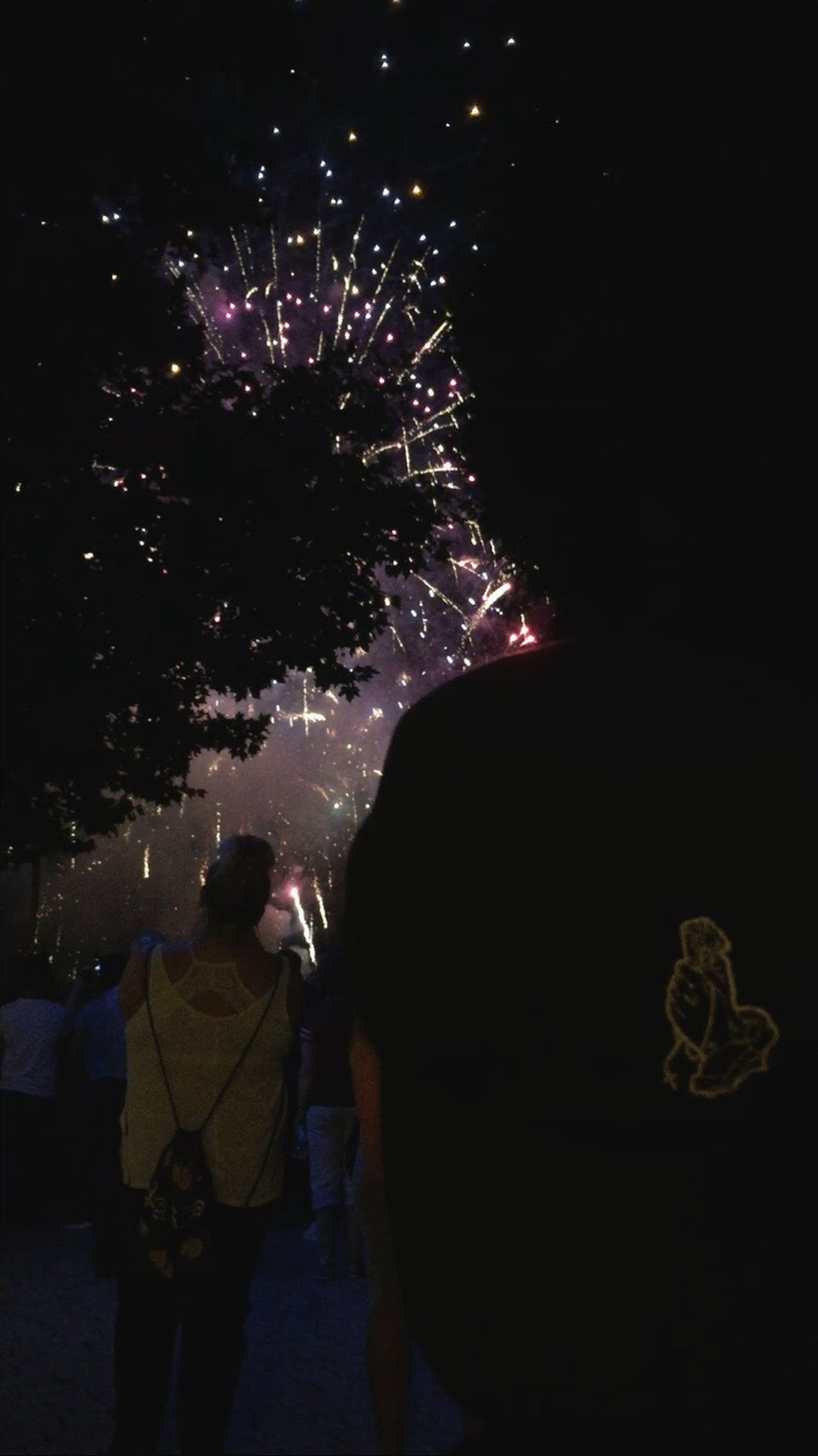 night, firework display, illuminated, exploding, rear view, celebration, real people, firework - man made object, men, standing, lifestyles, arts culture and entertainment, low angle view, outdoors, group of people, women, firework, sky, people, astronomy, adult