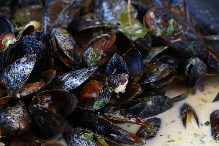 Steamed and roasted Belgian mussels with herbs and milk, cream sauce, close up Backgrounds Belgian Mussels Close-up Cuisine Day Food Food And Drink Freshness Healthy Eating Herb Meal Mealtime Milk Mussel Mussels Nature Open Ready-to-eat Roasted Sauce Seafood SHELLFISH  Steamed  Street Food Traditional