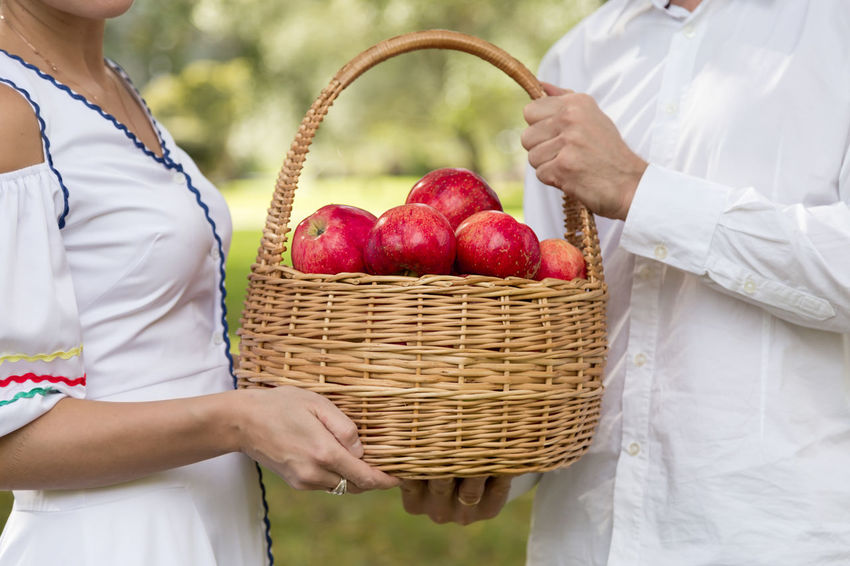 woman and man carry a harvest of red apples in a wicker basket Agriculture Apple Bio Diet Eco Family Farm Gardener Rustic Apples Basket Food Fresh Garden Girl Harvest Healthy Eating Healthy Food Organic Picking Red Apple Ripe Straw Vegan Gluten Free Farmland Harvesting Homegrown Produce Farmer's Market Organic Farm