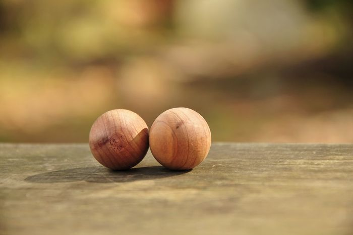 Meditation Time Wood Acorn Cedar Close-up Day Food Food And Drink Freshness Fruit Harmony Of Colours Healthy Eating Nature No People Nut - Food Outdoors Red Cedar Simbols Wood - Material Yogagirl