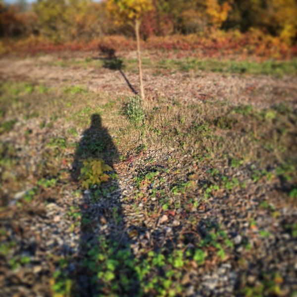 My Shadow.