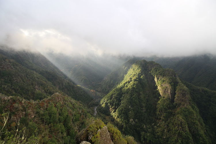 Nature Mountain Beauty In Nature Forest Outdoors Cloud - Sky Madeira, Portugal