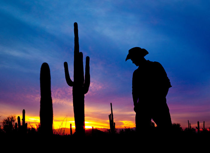 Silhouette man standing by cactus against sky during sunset