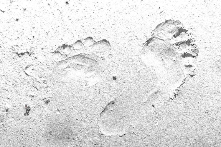 Footsteps At
