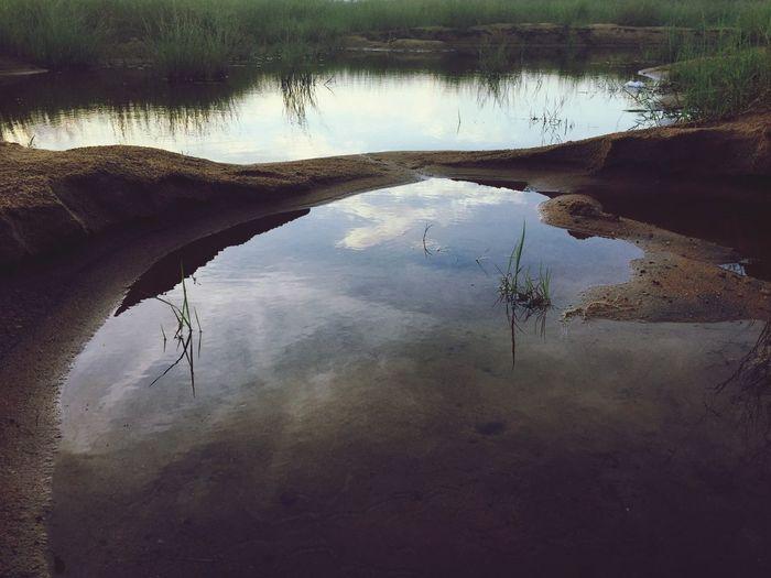 Bharathappuzha Nature