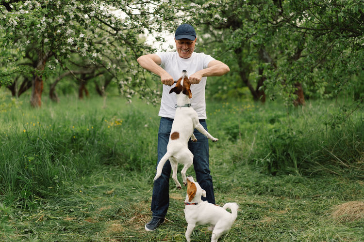 Man playing with dogs