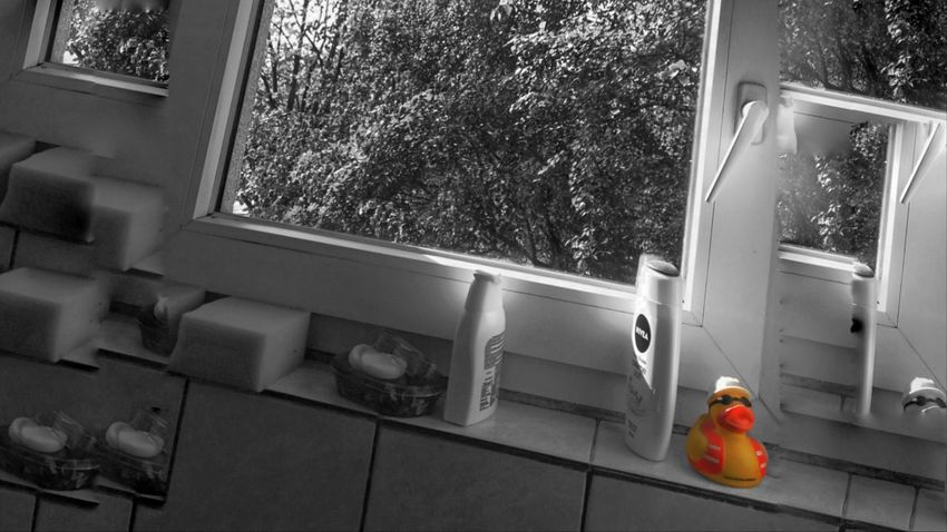 EyeEm Blackandwhite Photography Black And White Duck Man Bathroom Window This Is Strength