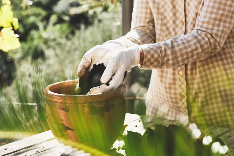 Spring gardening. hands in gloves plant a flower bulb and pours the ground in ceramic flower pot.