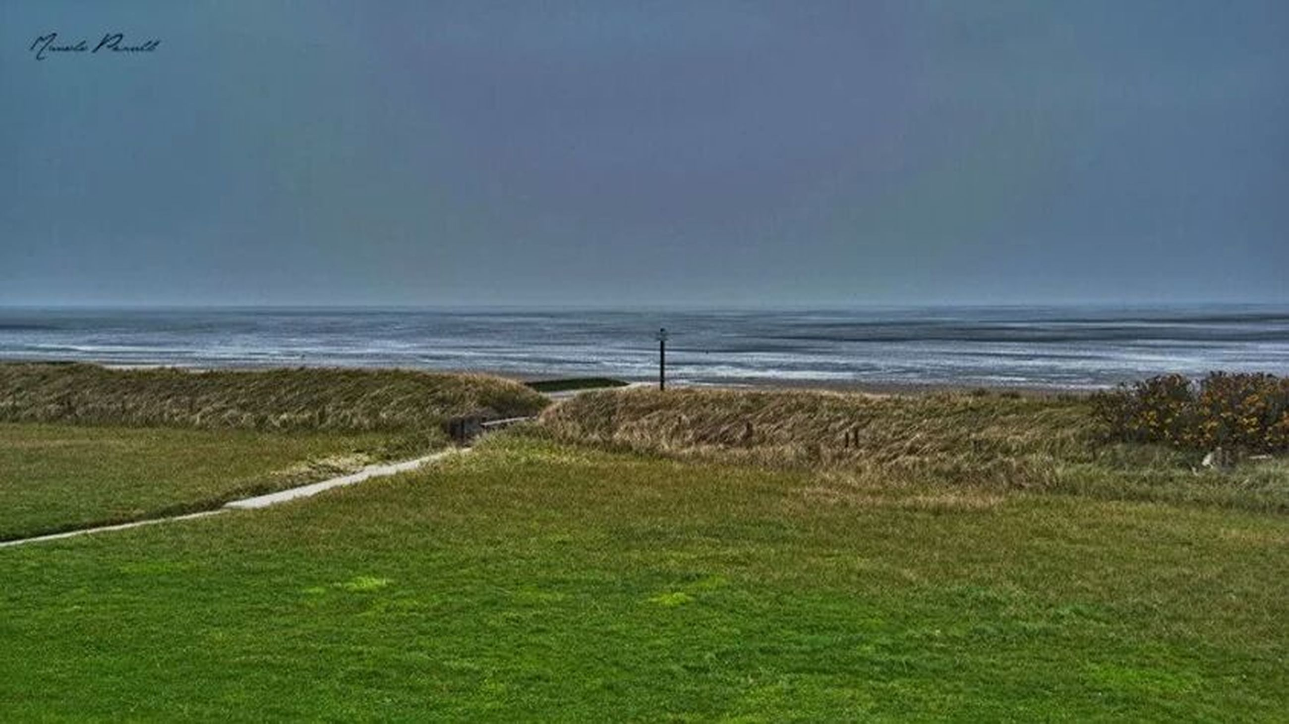 sea, horizon over water, water, tranquil scene, tranquility, grass, scenics, beauty in nature, nature, sky, copy space, clear sky, beach, shore, landscape, idyllic, field, blue, remote, day