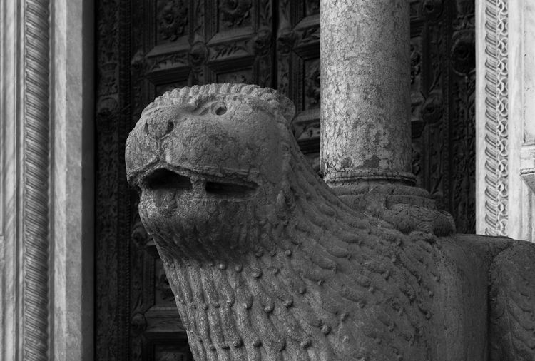 Emilia Romagna Italia Parma Animal Representation Animal Themes Architectural Column Architecture Architettura Romanica Art And Craft Black And White Close-up Creativity Duomo Di Parma History Italy Leones Parma Cathedral Representation Santa Maria Assunta, Parma Sculpture Statue Stone Material