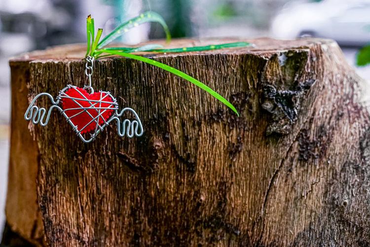 Close-up of heart shape on tree stump