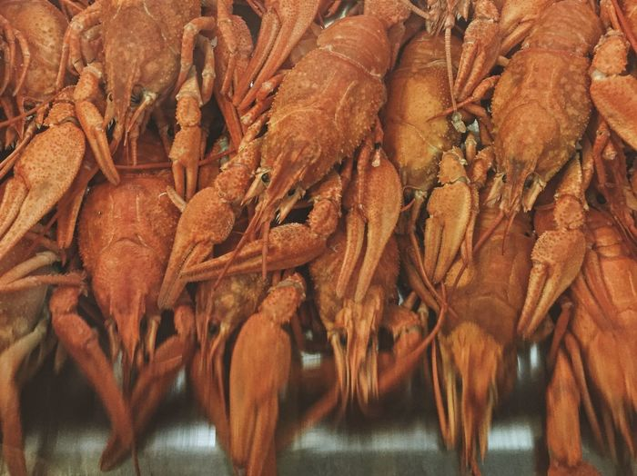Close-up of lobsters at market