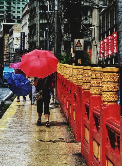 City Women Red