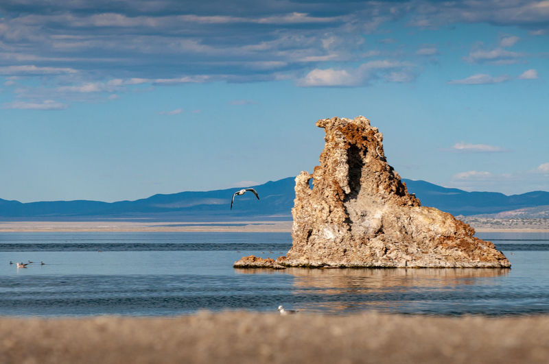 Bird flying by rock formation in lake against sky