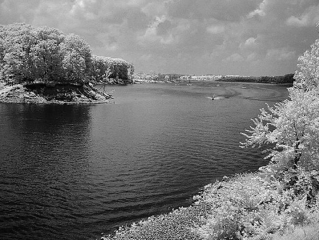 Infrared-Salamonie Res.. Fun Black & White Photography First Eyem Photo Shades Of Grey Creative Light And Shadow EyeEm Best Shots Painting With A Camera