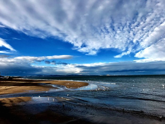Beach view Coastline Landscape Scotland Portobello Beach, Edinburgh Cloud - Sky Water Sky Scenics Beauty In Nature Sea EyeEmNewHere Nature Tranquil Scene Tranquility Horizon Over Water Outdoors Beach Day No People Blue