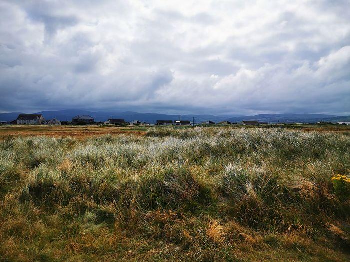 Mid Wales Storm