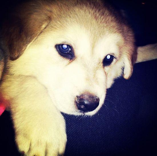 Cutee!!❤❤