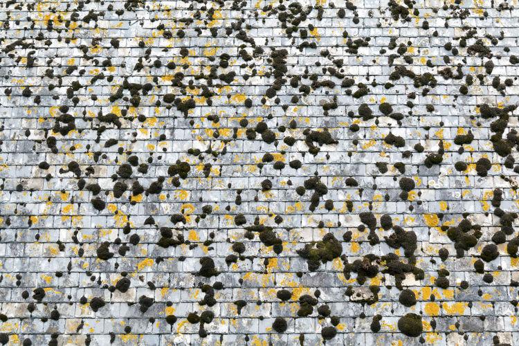 Full frame shot of messy brick wall
