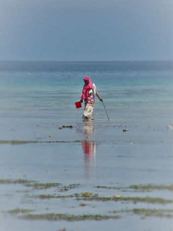 Beach Life Beach Work Colorful Life Day Nature Outdoors Reflections In The Water Sea Zanzibar