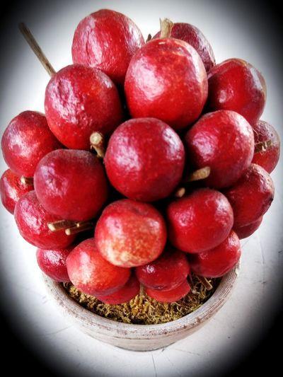 Red Freshness