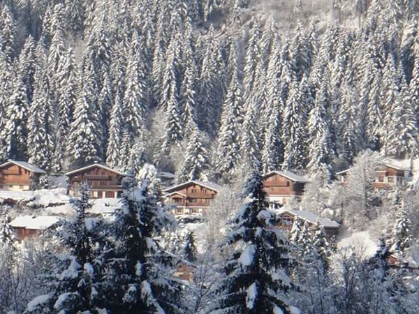 Bernex Winter Wonderland France