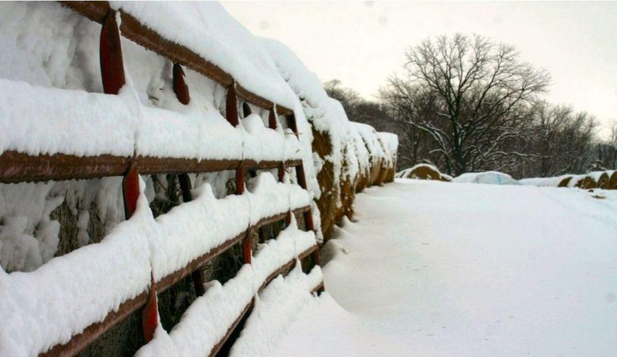 Snowing Snow Snow ❄ Snow Day Snowy Bridge Bridges Bridge View Snowfall Winter