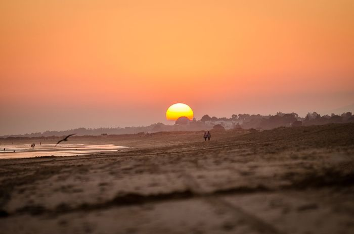 Sunset Sun Scenics Orange Color Sky Tranquil Scene Nature Beauty In Nature Sand Outdoors Tranquility Sea Landscape Beach Water Portugal Algarve Altura SPAIN Day No People The Week On EyeEm