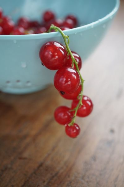 Fresh red berries Fresh Nobody Food Healthy Beeren Johannisbeeren Food And Drink Healthy Eating Food Fruit Wellbeing Red Freshness Close-up Berry Fruit Table Focus On Foreground No People Wood - Material Ripe Selective Focus