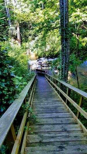 Climb Up! Georgia Stairs Hikingadventures Near Waterfall Steep Stairs Tallulahgorge Tiger Falls Wooden Stairs