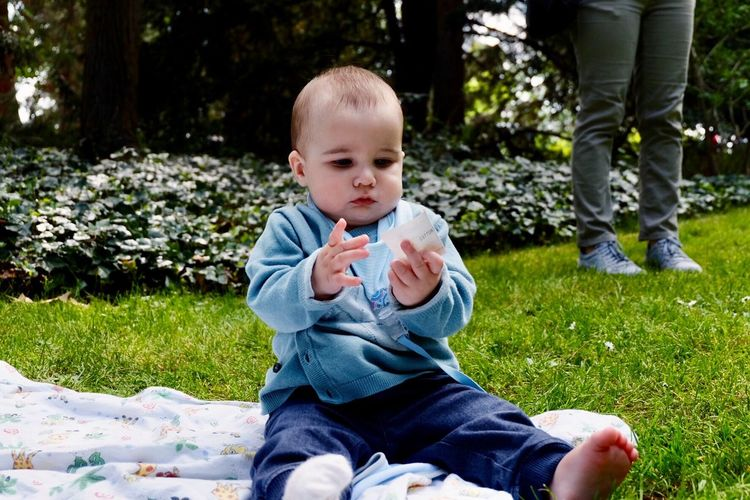 Full Length Of Cute Baby Boy Holding Paper While Sitting On Picnic Blanket In Park