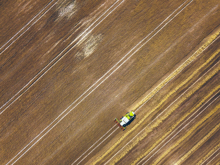 Harvesting DJI Mavic Pro DJI X Eyeem Drone  Lietuva Aerial Aerial View Agricultural Equipment Agricultural Machinery Agriculture Agriculture Fields Combain Combine Harvester Crop  Day Drone Photography Dust Environment Europe Farm Field Harvesting High Angle View Land Land Vehicle Landscape Machinery Mavic Mavic Pro Nature No People Outdoors Ripe Ripe Crops Rural Scene Summer Tractor Transportation The Creative - 2018 EyeEm Awards