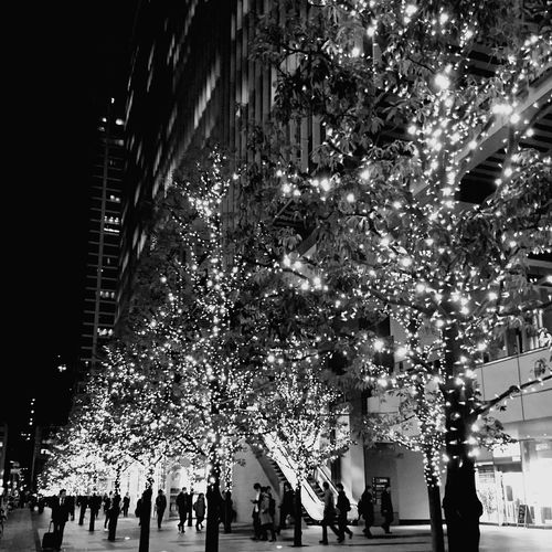 Night Christmas Illuminated Christmas Tree Christmas Lights City Architecture People Sky Illumination Celebration Tree Celebration Event Christmas Decoration Silhouette And Sky 東京 Light And Shadow Cityscape Blackandwhite Photography Monochrome Photography Happy New Year Event Tree Architecture Nightphotography