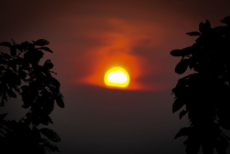 Sunset Dramatic Sky Orange Color Heat - Temperature Sky Sun Red Silhouette Tree Outdoors No People Beauty In Nature Cloud - Sky Nature Beauty Close-up EyeEmNewHere Nature Yellow Be. Ready.